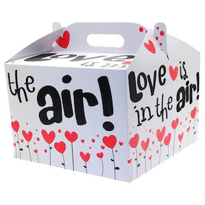 Love is in the air Printed Balloon Box